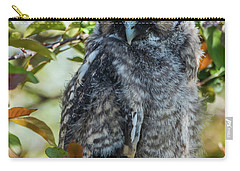 Carry-all Pouch featuring the photograph Napping Long-eared Owlet by Yeates Photography