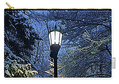 Narnia Carry-all Pouch