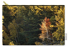 Carry-all Pouch featuring the photograph natural Framing by Aimelle