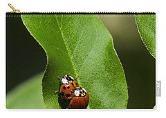 Nature - Love Bugs Carry-all Pouch by Christina Rollo