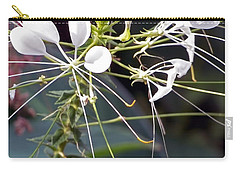 Nature's Design Carry-all Pouch by Lauren Radke