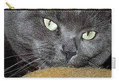 My Nellie-belle's Catitude Carry-all Pouch