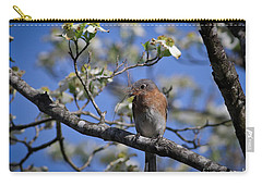 Carry-all Pouch featuring the photograph Nest Building by Douglas Stucky