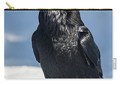 Nevermore Carry-all Pouch by Jack Bell