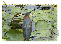 Nevis Bird Observes Carry-all Pouch by Margaret Brooks