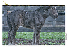 New Born Carry-all Pouch