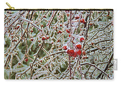 New England Ice Storm Carry-all Pouch