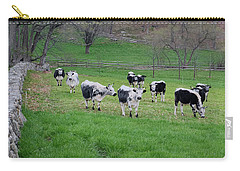 Carry-all Pouch featuring the photograph New England Spring Pasture Square by Bill Wakeley