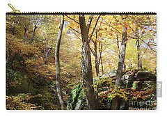 Carry-all Pouch featuring the photograph Niche In Smuggler's Notch by Felipe Adan Lerma
