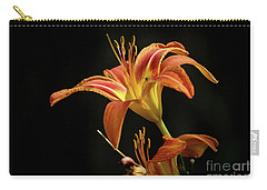 Carry-all Pouch featuring the photograph Norris Lake Daylily by Douglas Stucky