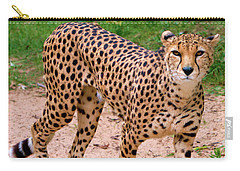 North African Cheetah Carry-all Pouch