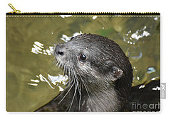 North American River Otter Swimming In A River Carry-all Pouch