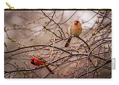 Carry-all Pouch featuring the photograph Northern Cardinal Pair In Spring by Terry DeLuco