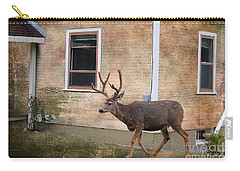 Northern Exposure Photo Paint Carry-all Pouch