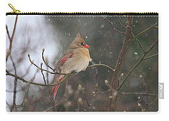 Northern Female Cardinal Carry-all Pouch