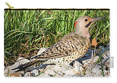Northern Flicker In The Backyard Carry-all Pouch