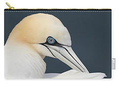 Carry-all Pouch featuring the photograph Northern Gannet At Troup Head - Scotland by Karen Van Der Zijden
