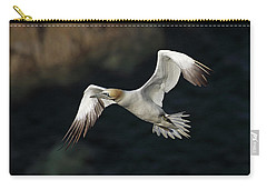 Carry-all Pouch featuring the photograph Northern Gannet In Flight by Grant Glendinning