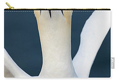 Carry-all Pouch featuring the photograph Northern Gannet Stretching Its Wings by Karen Van Der Zijden