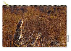 Carry-all Pouch featuring the photograph Northern Harrier At Sunset by Sharon Talson