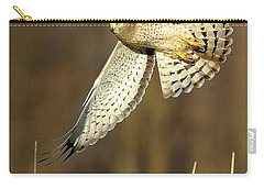 Northern Harrier Banking Carry-all Pouch