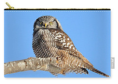 Northern Hawk-owl On Limb Carry-all Pouch