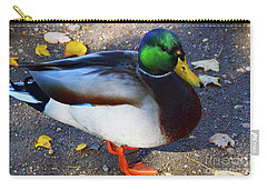 Northern Male Mallard Duck Carry-all Pouch