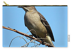 Northern Mockingbird Carry-all Pouch by Bruce J Robinson