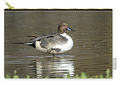 Northern Pintail Duck Carry-all Pouch by Tam Ryan