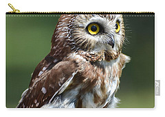 Northern Saw Whet Owl Carry-all Pouch