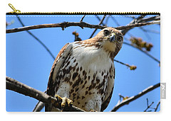 Not Polite To Stare Carry-all Pouch by Kathy Eickenberg