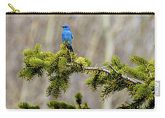 Notice The Pretty Bluebird Carry-all Pouch by Yeates Photography