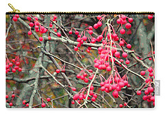 November Crabapples Carry-all Pouch
