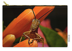 Carry-all Pouch featuring the photograph Now Lets Pray 666. by Kevin Chippindall