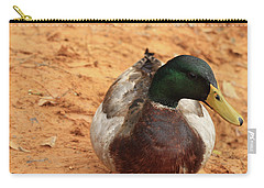 Carry-all Pouch featuring the photograph Number 17 by Kim Henderson