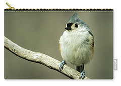 Titmouse Thinking About Weighty Matters Carry-all Pouch