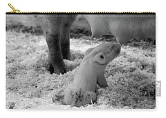 Nuture Carry-all Pouch