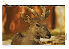 Nyala 3 Carry-all Pouch