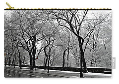 Nyc Winter Wonderland Carry-all Pouch