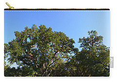 Oak Alley Plantation Panoramic Carry-all Pouch