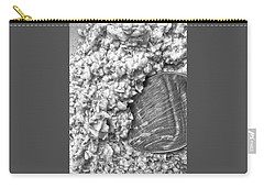 Carry-all Pouch featuring the photograph Oatmeal by Robert Knight