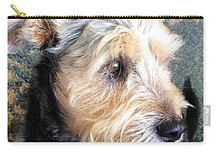 Old Dogs Rock Carry-all Pouch