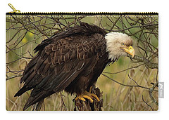 Old Eagle Carry-all Pouch