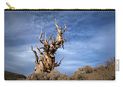 Carry-all Pouch featuring the photograph Old Friend by Sean Foster