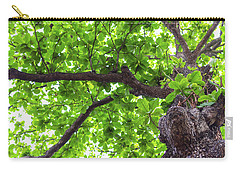 Carry-all Pouch featuring the photograph Old Green Tree by Jingjits Photography