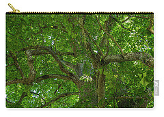 Old Linden Tree. Carry-all Pouch