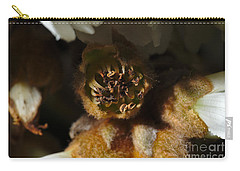Old Loquat Tree Flower Carry-all Pouch by Angelo DeVal