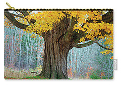 Old Maple Tree And Swing In Autumn Color Carry-all Pouch