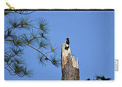 Carry-all Pouch featuring the photograph Old Red by Skip Willits