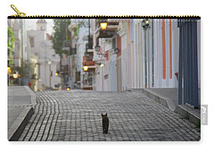 Old Town Alley Cat Carry-all Pouch